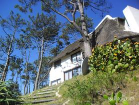 Alquiler temporario de casa en Punta ballena