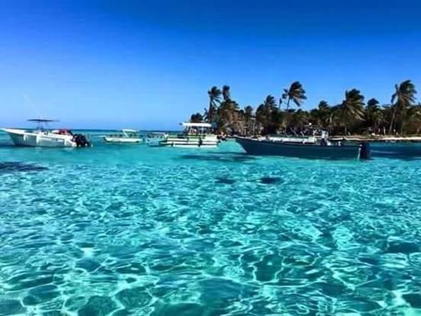 Arriendo temporario de departamento en San andres isla colombia