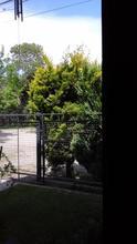 Alquiler temporario de departamento en San martín de los andes
