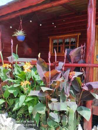 Alquiler temporario de cabaña en Miramar pcia . buenos aires