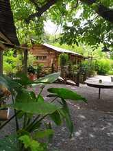 Alquiler temporario de casa quinta en San pedro